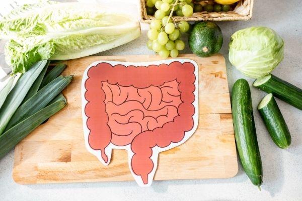 digestive health food